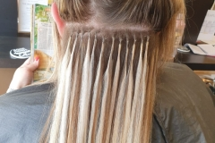 1_U-Tip-Hair-Extensions-by-Jenny-22/24 inch. During